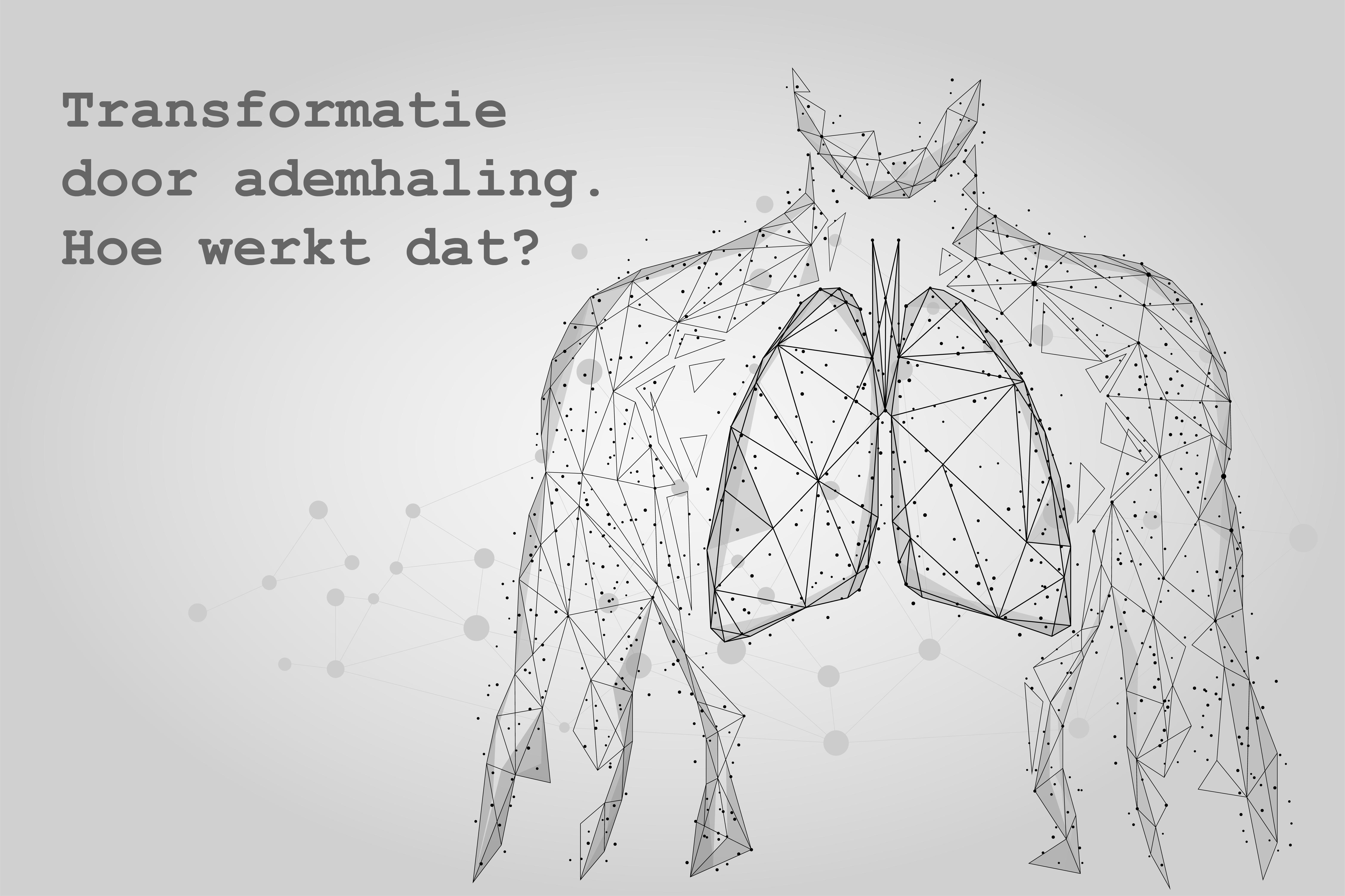 Transformatie door ademhaling. Hoe werkt dat?